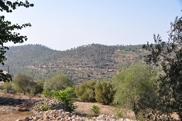 Widok z Kiryat